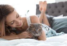 assurance-animaux-comment-ça-marche-?